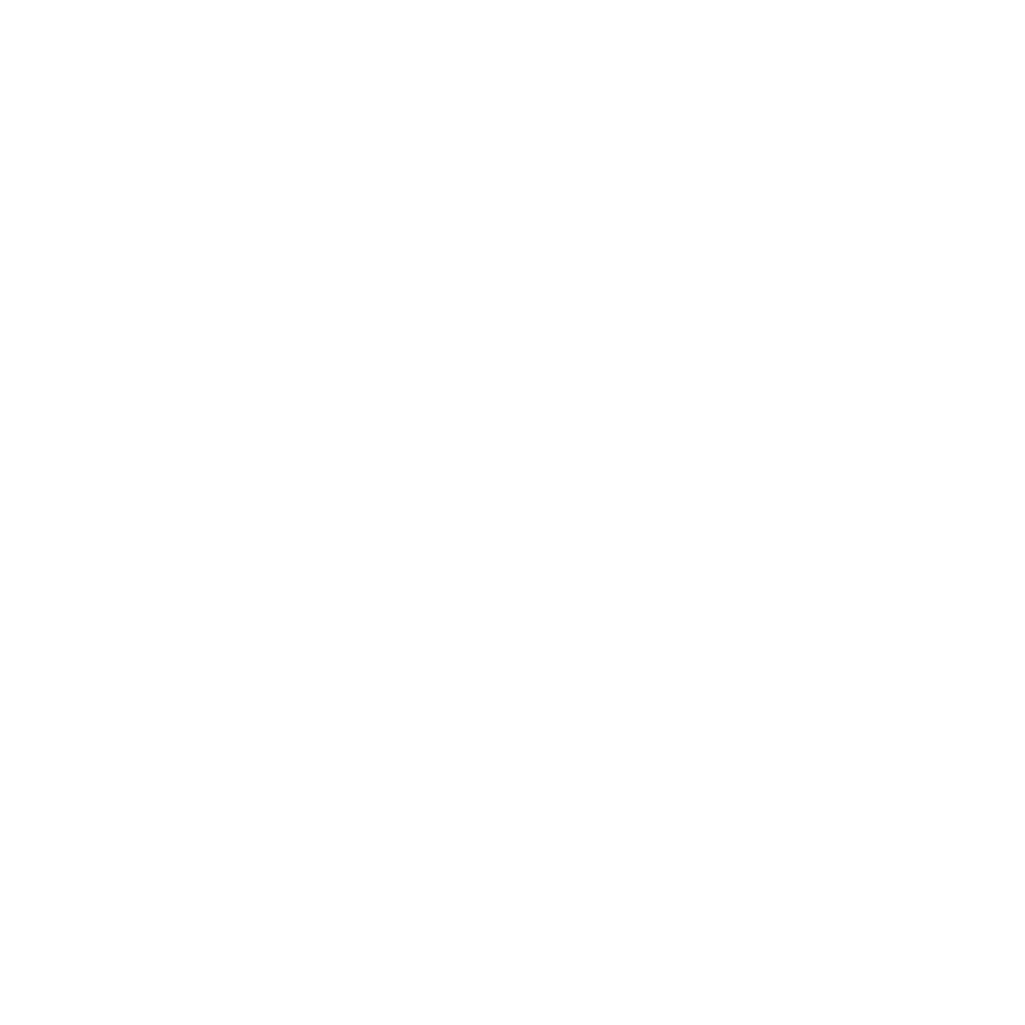 The Crafty Fly